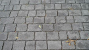 Pattern Imprinted Concrete Prices - Deep Joint Slate Cobblestone